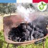 allume feu pour barbecue Flamagic