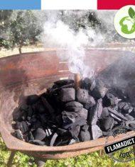 photo-produit-allume-feux-barbecue-flamagic
